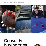 2019 Consol buying trips