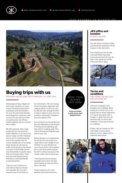 2019 Consol buying trips Page 3