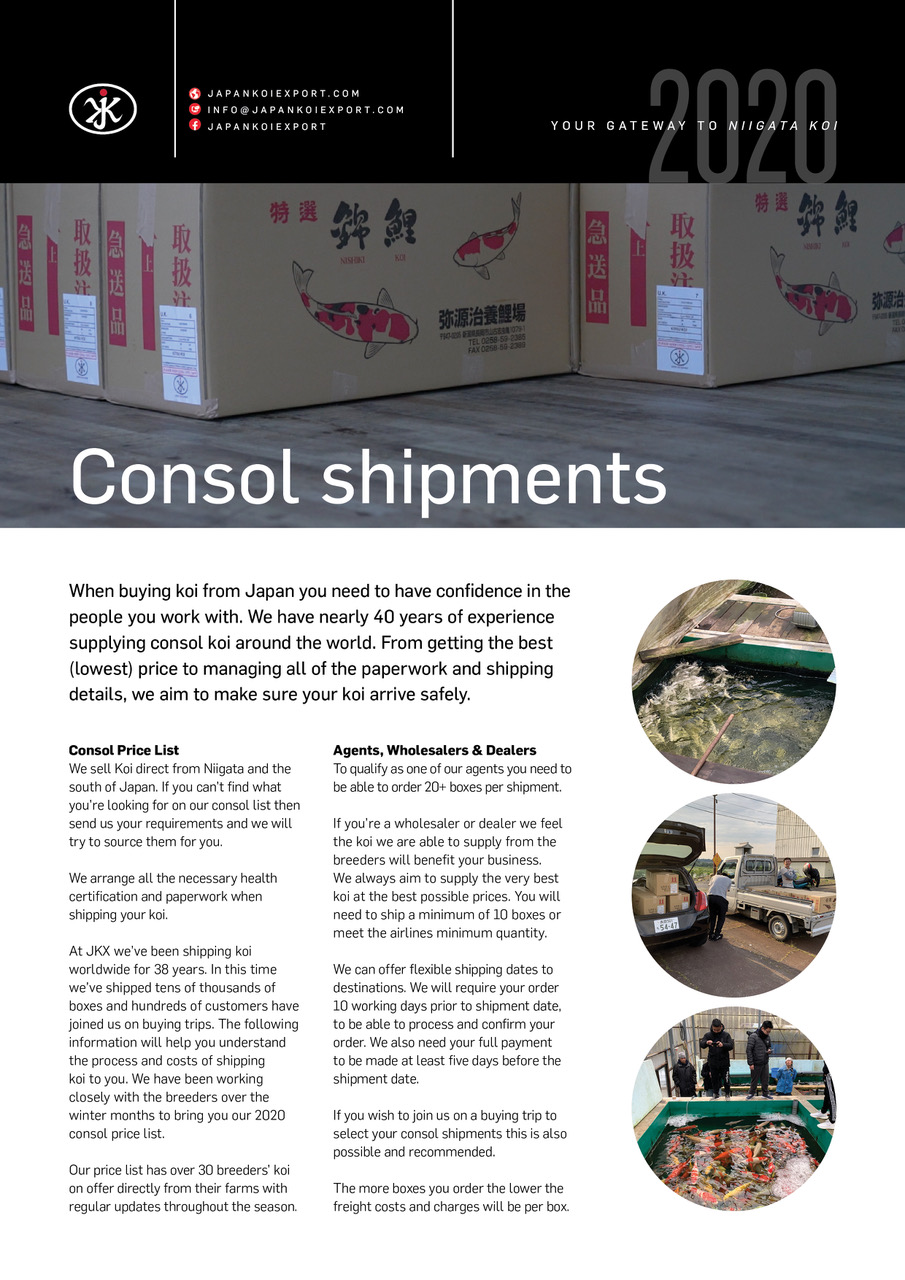 Consol shipments