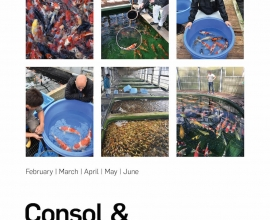 JKX Consol and Buying trips newsletter 2018 OUT NOW