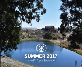 JKX summer newsletter 2017